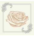 ornate frame with sketchy drawing of rose flower vector image