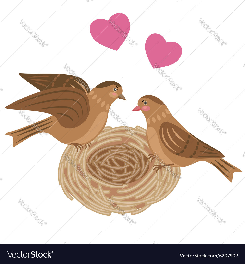 Bird nest vector