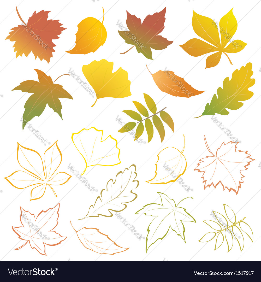 Falling leaves set vector