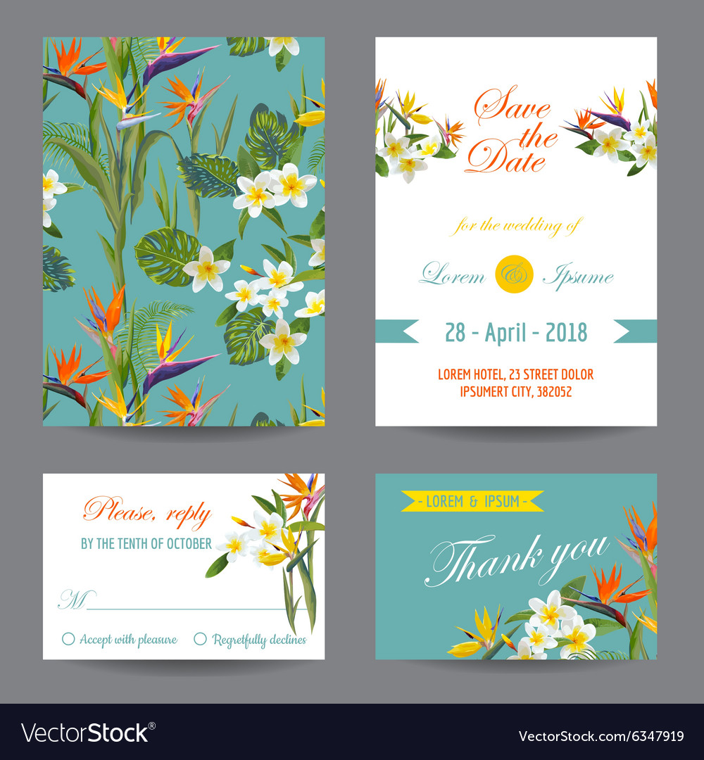 Invitation or greeting card set  tropical flowers vector