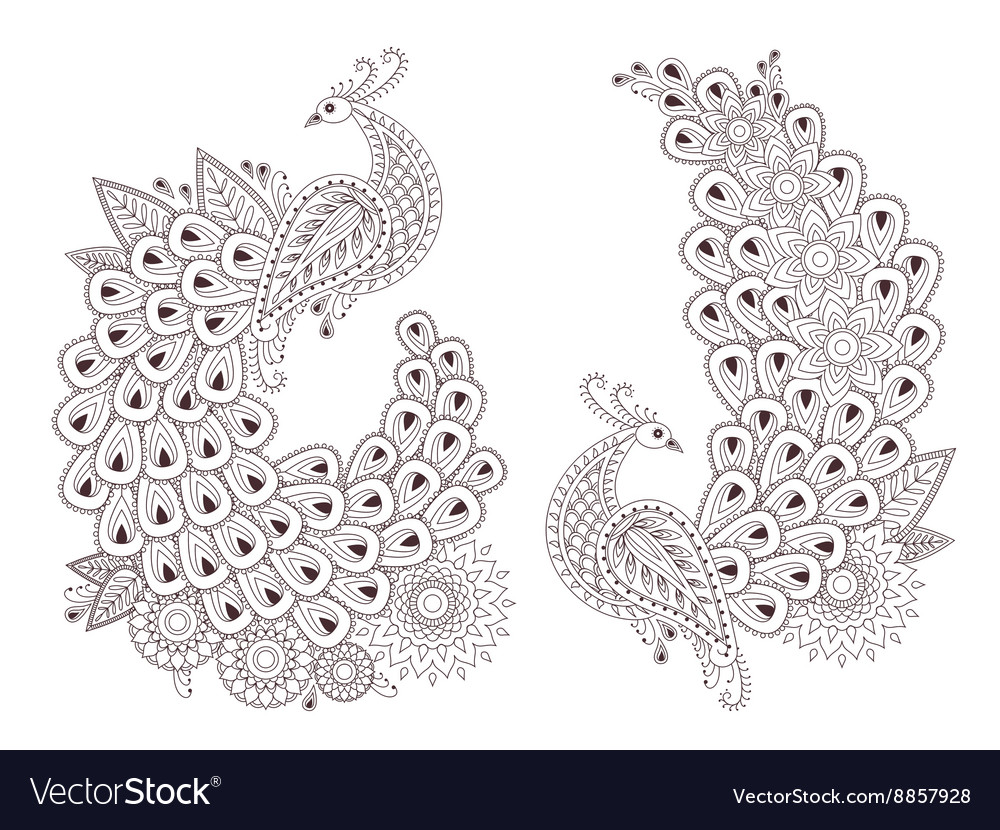 Beautiful peacock birds in indian mehndi vector