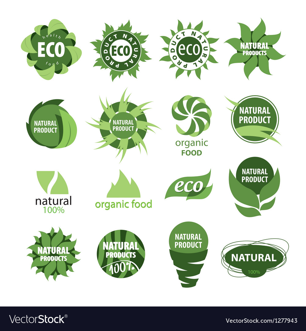 Icons of natural products vector