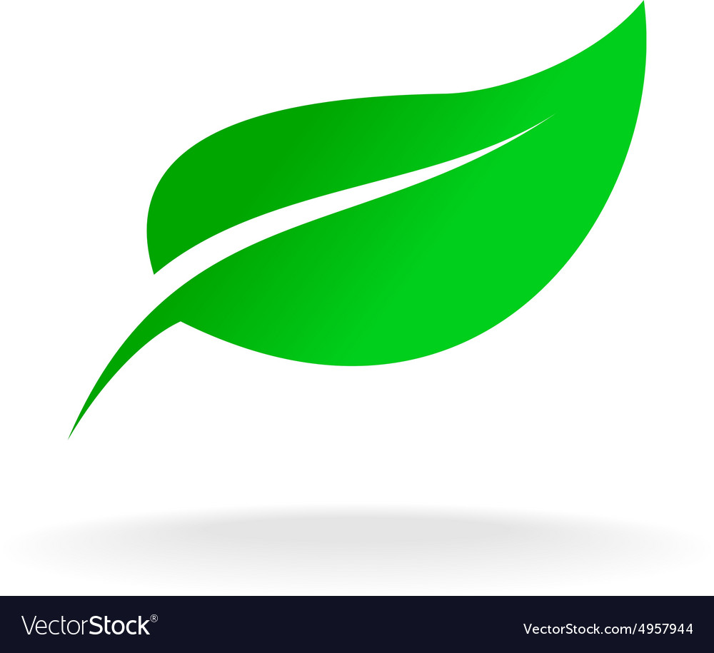 Green leaf symbol vector