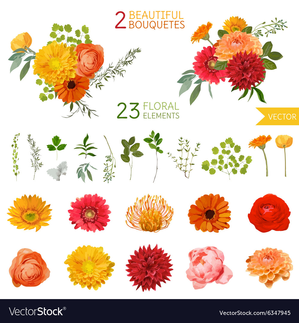 Vintage flowers and leaves  in watercolor style vector