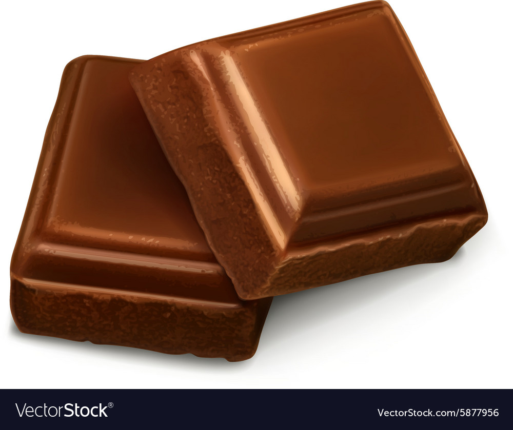Chocolate pieces vector