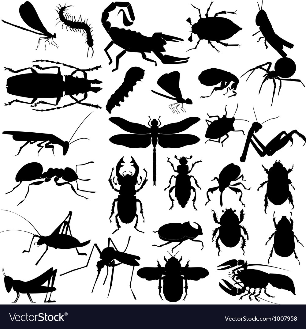 Silhouettes of insects vector
