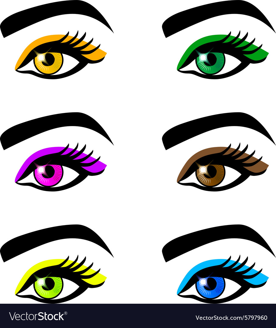 Collection female eyes and eyebrows of shapes vector