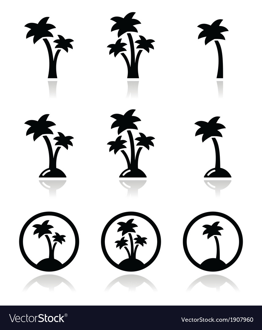 Palm trees exotic holidays on beach icons vector