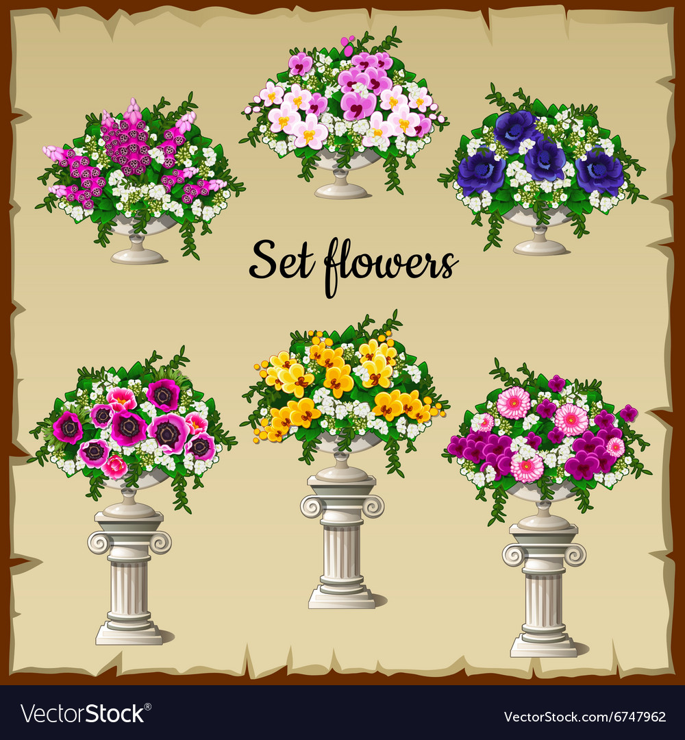 Different flowers bouquets in antique vases vector