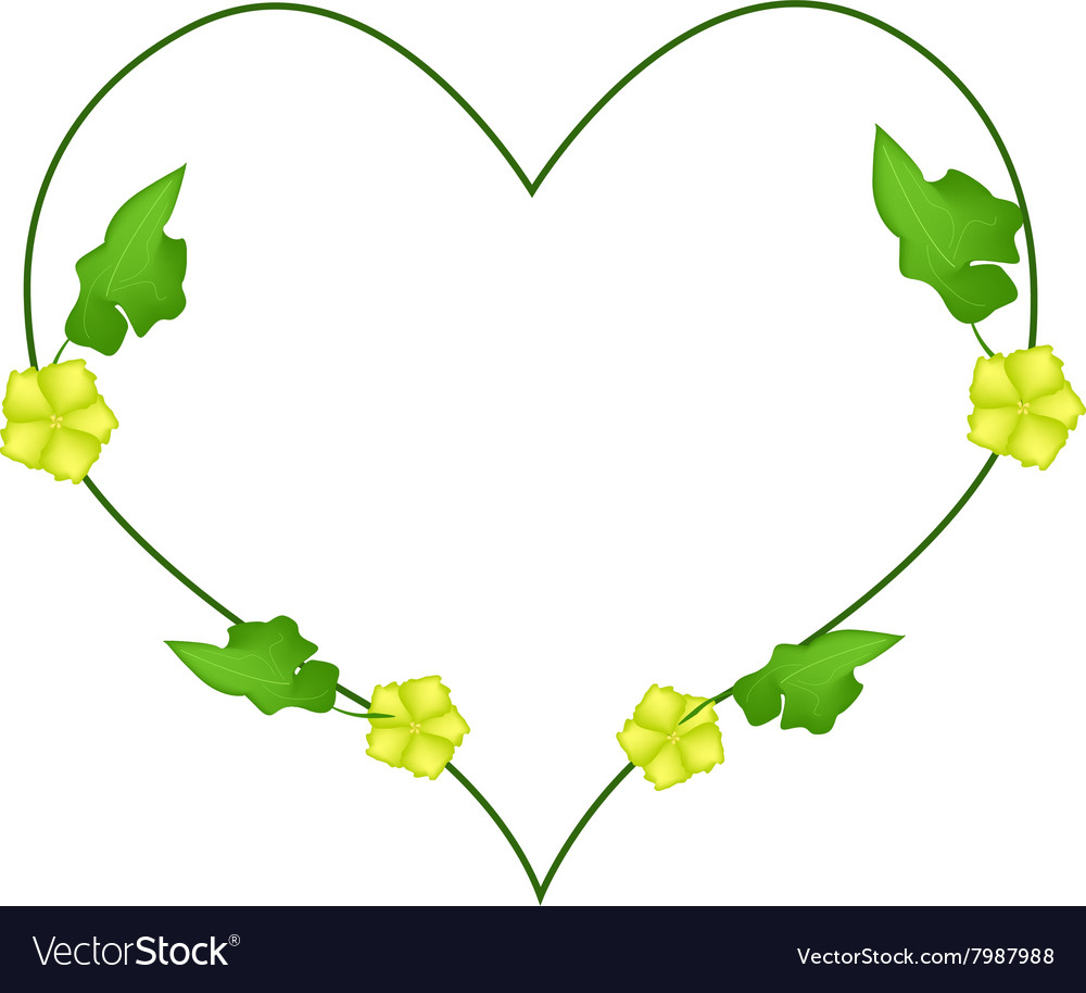 Ivy plant with blossoms in heart shape vector
