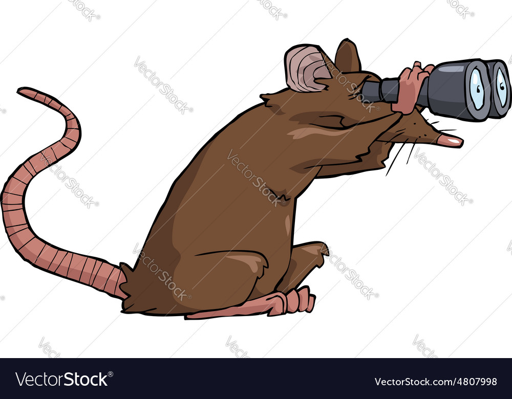Rat looking through binoculars vector