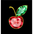 Ruby Cherry vector image