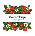 beautiful strawberries composition vector image