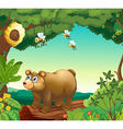 A bear with three bees inside the forest vector image