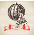 Hand drawn sketch fruit watermelon Eco food vector image