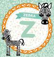ABC animals Z is zebra Childrens english alphabet vector image