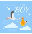 stork newborn boy vector image