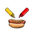 sketch hot dog ketchup mustard bottles set vector image