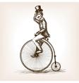 Man on retro vintage old bicycle sketch vector image vector image