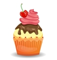 Colorful isolated cupcake with red chrry and vector image