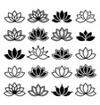 Lotus flower design set yoga collection vector image