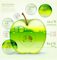 02 Apple infographic vector image