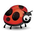 comic ladybird isolated vector image