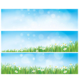 spring banners vector image