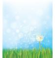 dandelion sky background vector image