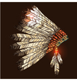 Indian Tribal Headdress vector image
