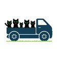 black cats ride in a truck vector image