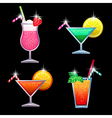 coctails vector image