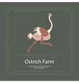 Logotype of ostrich farm vector image
