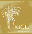 background with rice logo hand-drawn plant vector image
