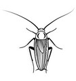 cockroach design animal for vector image