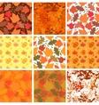 Set of seamless autmn backgrounds vector image