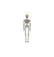 Skeleton computer symbol vector image