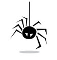 spider icon isolated sign vector image