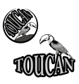 logo with the image of a toucan vector image