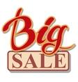 Big Sale signboard vector image