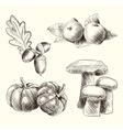 Autumn food set sketch vector image