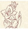 Gladiolus flower line vector image