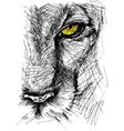 Hand drawn Sketch of a lion vector image vector image