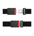 seatbelt open and closed set vector image