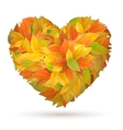 Heart from autumn leaves vector image vector image