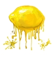 fruit lemon hand drawn vector image vector image