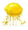 fruit lemon hand drawn vector image