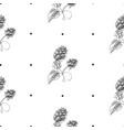 hand drawn herbal natural seamless pattern vector image