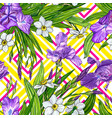 seamless pattern with iris and narcissus flowers vector image