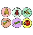 A Set of Insects on Round Background vector image